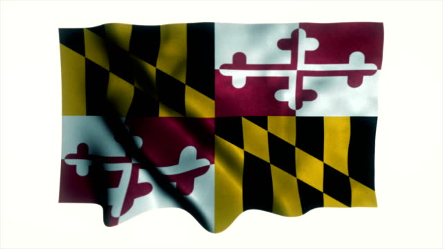 us state flag of maryland - maryland us state stock videos and b-roll footage