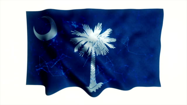 US state flag of South Carolina