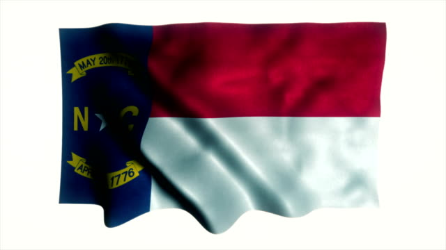 US state flag of South Carolina