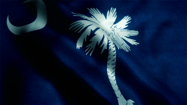 us state flag of south carolina - south carolina stock videos & royalty-free footage