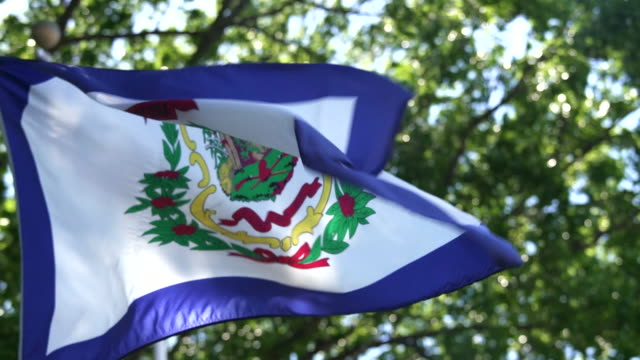 state flag of west virginia waving in the breeze - 4k/uhd - west virginia us state stock videos & royalty-free footage