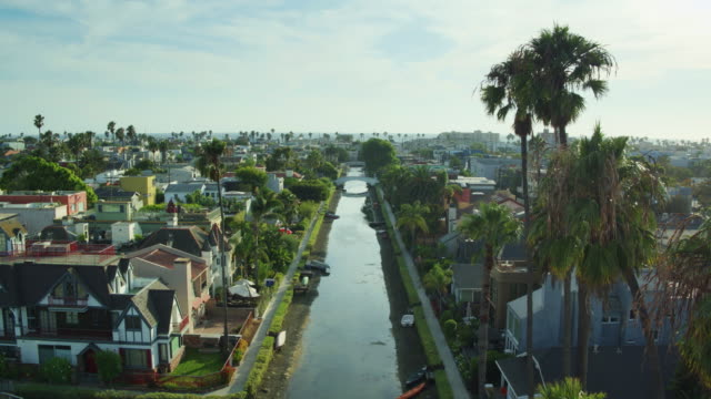 static drone shot of palm trees swaying above venice canal historic district - canal stock videos & royalty-free footage