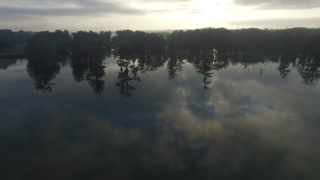 static high shot of swamp with cloud reflection - drone aerial 4k everglades, swamp bayou with wildlife alligator nesting ibis, anhinga, cormorant, snowy egret, spoonbill, blue heron, eagle, hawk, cypress tree 4k nature/wildlife/weather - bayou lafourche stock-videos und b-roll-filmmaterial