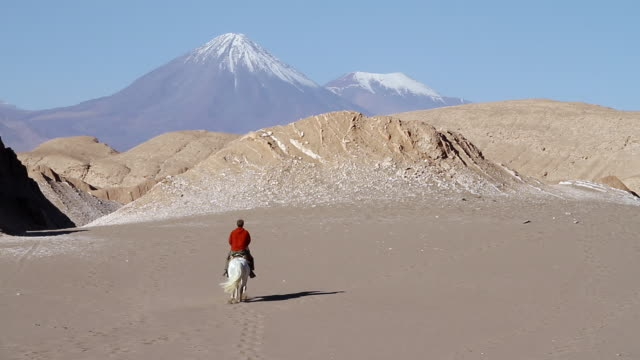 ms static man on horseback rides away / angostura, chile - wiese stock videos & royalty-free footage