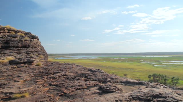 ms static man walking towards edge of cliff and looks out / northern territory, australia - wiese stock videos & royalty-free footage