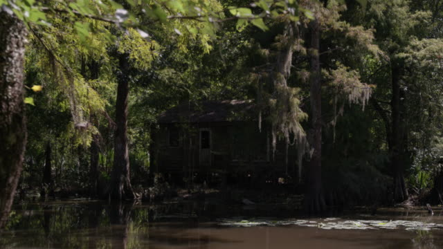static shot of an abandoned house in the middle of the flooded forest - shack stock videos & royalty-free footage