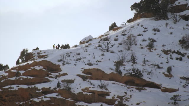 static shot of group of people in winterclothes on top of cliff. - プロボ点の映像素材/bロール