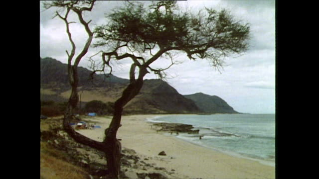 static shot of natural unspoilt beach and shoreline; hawaii, 1985 - hawaii islands stock videos & royalty-free footage