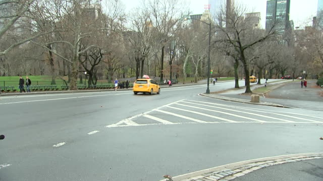 static shot of taxis and cars driving through road in central park. branches on the trees are bare, but the grass is green due to the unseasonably... - manhattan stock videos & royalty-free footage