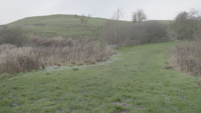 static shot of the landscape in wharram percy - frost stock videos & royalty-free footage