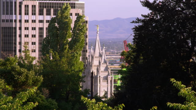 static shot of the lds salt lake city temple through some trees. - mormon temple stock videos and b-roll footage