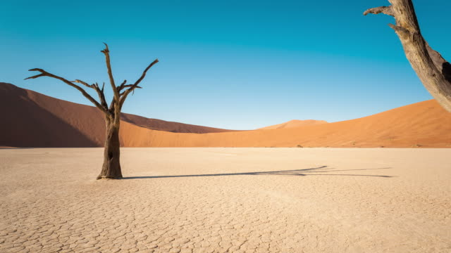 vídeos de stock, filmes e b-roll de static timelapse of a landscape scene in deadvlei, namibia with a solidified tree in a white clay pan - clima árido