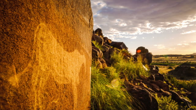vidéos et rushes de static timelapse with a textured rock and a bushmen engraving on a hill with green grass in the foreground and the sun setting in the background - karoo