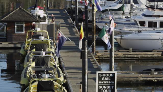 static view of boat harbor in victoria - カナダ ビクトリア市点の映像素材/bロール