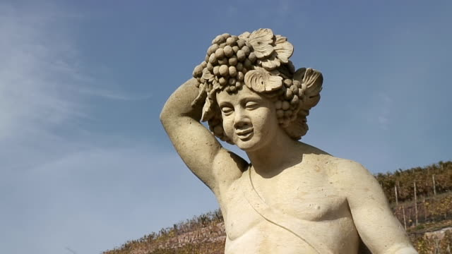 vidéos et rushes de cu statue at winery schlob wackerbarth rear radebeul / radebeul, saxony, germany - représentation masculine