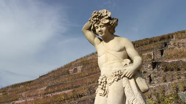 vidéos et rushes de ms statue at winery schlob wackerbarth rear radebeul / radebeul, saxony, germany - représentation masculine