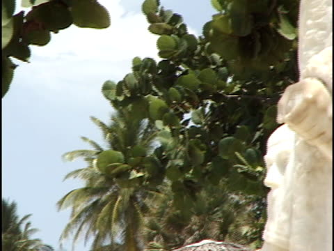 stockvideo's en b-roll-footage met td, pan, statue facing varadero beach, havana, cuba - waaierpalm