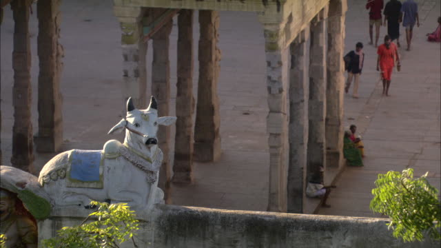 a statue of a cow sits near the stone pillars of a hindu temple. - indien stock-videos und b-roll-filmmaterial
