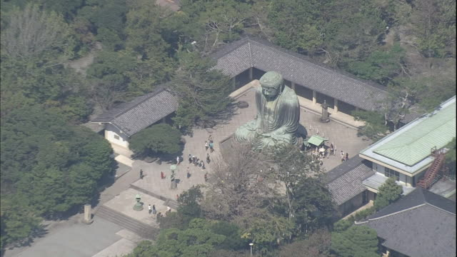 a statue of kamakura daibutsu dominates a temple courtyard in japan. - buddha stock-videos und b-roll-filmmaterial