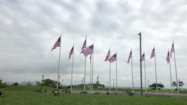 Statue of liberty, flags and goose