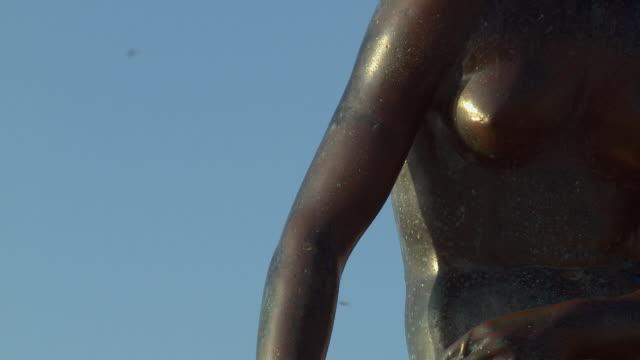 ms zo statue of little mermaid on stone / copenhagen, denmark, denmark - オーレスン地域点の映像素材/bロール