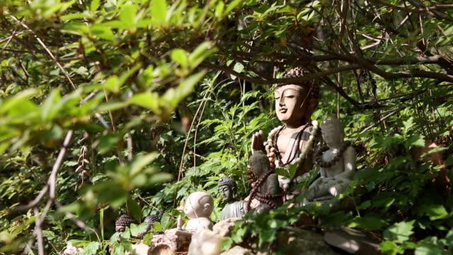 vídeos de stock e filmes b-roll de statue of the buddha at gilsangsa temple(most famous temple at seoul) in seoul city - figura masculina