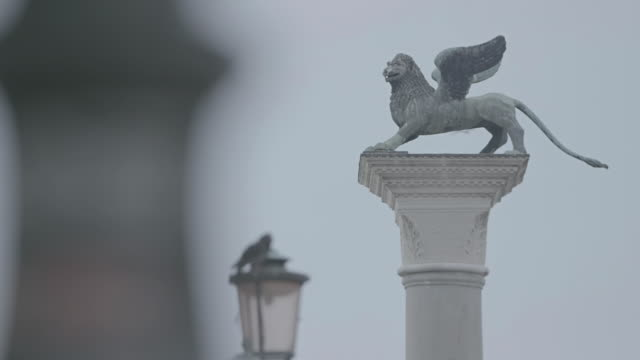 ms tu statue of winged lion on top of column at st. mark's square / venice, italy - animal wing stock videos & royalty-free footage