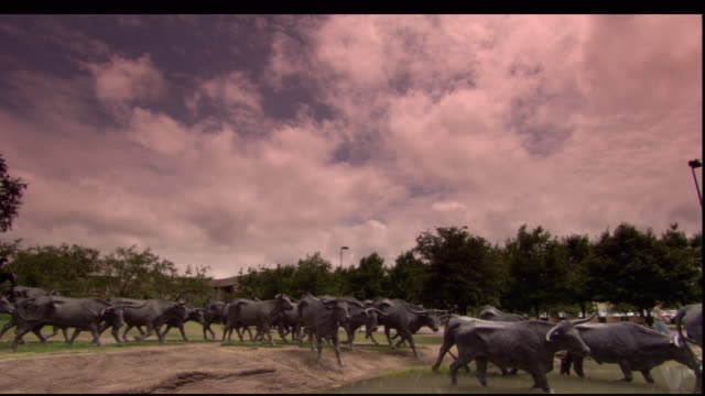 Statues in a park depict a herd of running cattle.