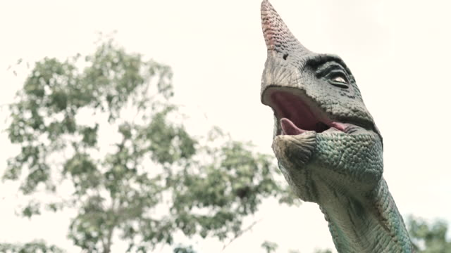 statues of real dinosaur species are in the park, which is displayed to the public, children can learn in this place. - dinosaur stock videos & royalty-free footage