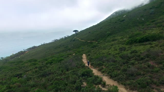 staying fit and healthy - lion's head mountain stock videos and b-roll footage