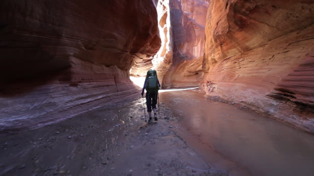 steady cam view of woman hiking with backpacks  through river in deep red rock desert slot canyon. - narrow stock videos & royalty-free footage