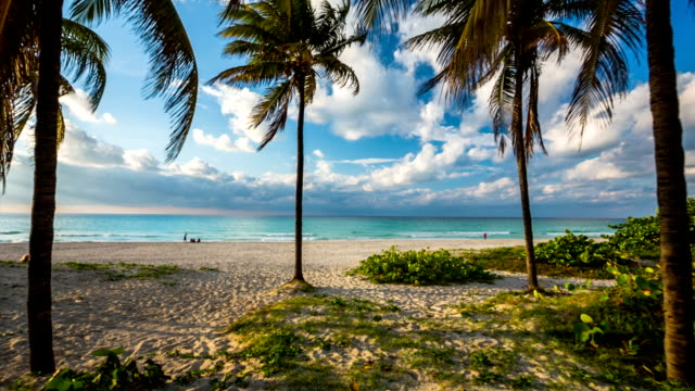 steadycam shot of perfect tropical beach in varadero, cuba - cuba stock videos & royalty-free footage