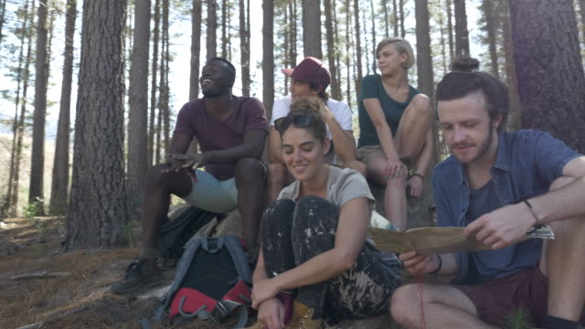 steady-cam_group of friends hanging out in the forrest and looking at map, at sunrise - 20 29 years stock videos & royalty-free footage
