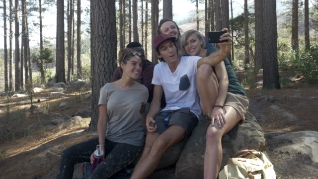 steady-cam_group of friends hanging out in the forrest & making selfies, at sunrise - camping stock videos & royalty-free footage