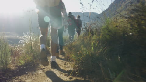 steady-cam_group of friends hiking on path threw mountain area, at sunrise - exploration stock-videos und b-roll-filmmaterial