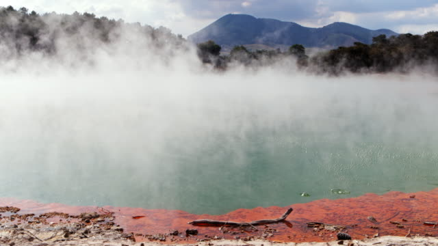 stockvideo's en b-roll-footage met ws steam and gas rise from a geothermal pool / rotorua, new zealand - thermaalwater