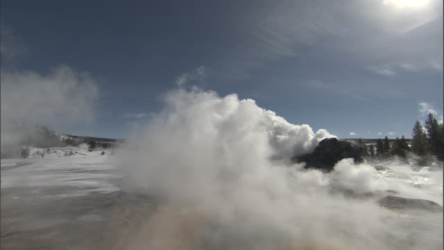Steam billows from hot spring and Castle geyser, Yellowstone, USA