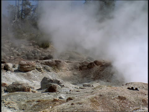 steam billows up from the earth at yellowstone national park. - 水の形態点の映像素材/bロール