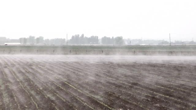 Steam fog over a field