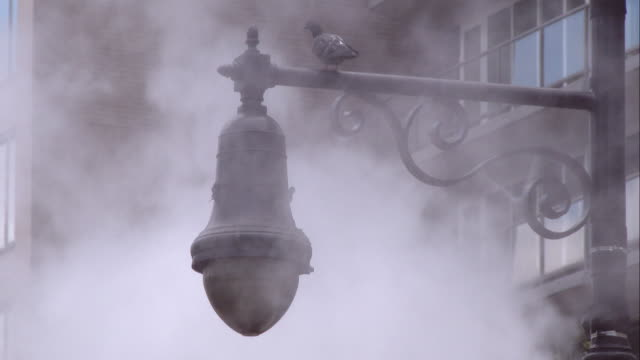 Steam from a Smoke Stack Obscuring a Pigeon on a Lamp Pole