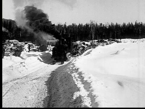 vidéos et rushes de 1927 b/w ws steam hauler stacked with logs moving past village, ontario, canada - locomotive
