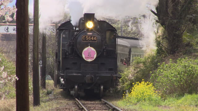 steam locomotive and cherry blossoms in japan - shizuoka prefecture stock videos and b-roll footage