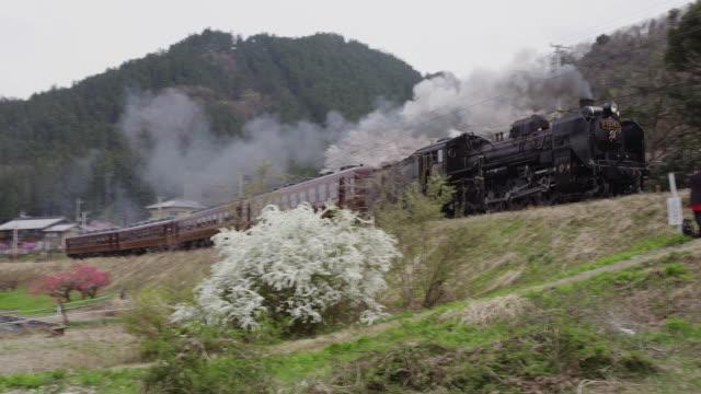 Steam locomotive Paleo Express of Chichibu Railway in Japan