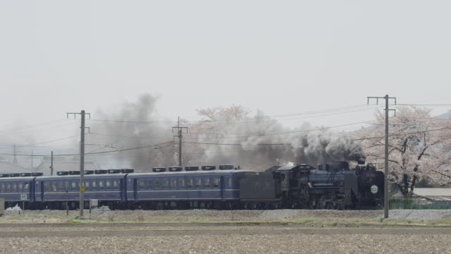 Steam locomotive travelling with black smoke and Cherry Trees in Japan