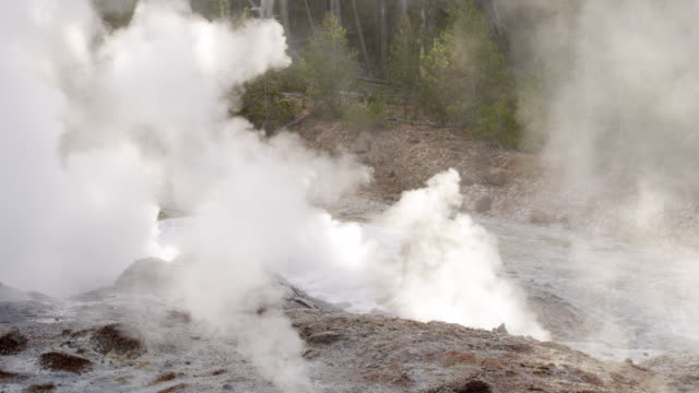 MS PAN Steam of thermal pool hot spring geyser with forest trees at morning / Yellowstone National Park, Wyoming, United States