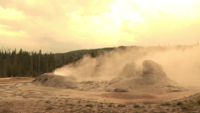stockvideo's en b-roll-footage met ms, steam raising from geysers, upper geyser basin, yellowstone national park, wyoming, usa - sepiakleurig