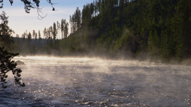 steam rises from the firehole river as it flows past wooded banks in yellowstone national park. - hot spring stock videos & royalty-free footage