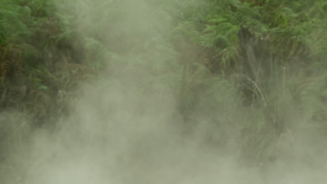 steam rises from thermal spring, sulawesi. - spring flowing water stock videos & royalty-free footage