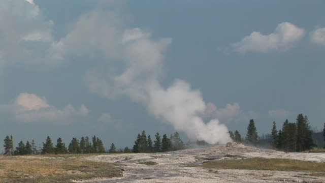 ms, steam rising from old faithful geyser, upper geyser basin, yellowstone national park, wyoming, usa - old faithful stock videos & royalty-free footage