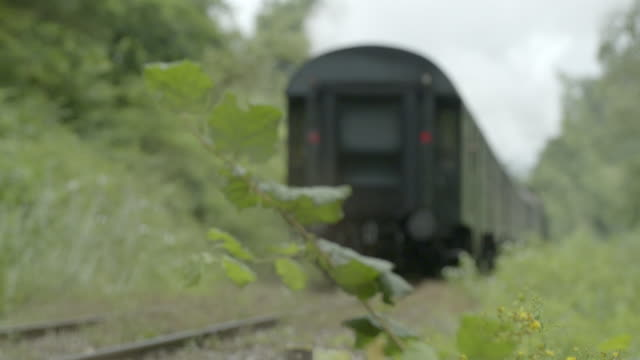 steam train moving away from the camera out of focus - locomotive stock videos & royalty-free footage